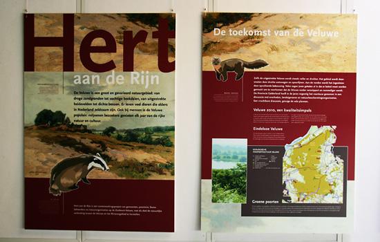 Hert aan de Rijn