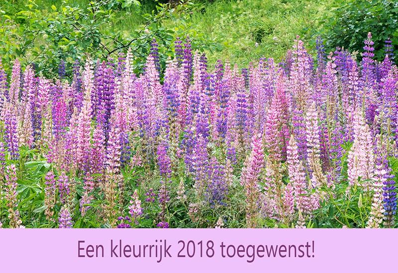 Kleurrijk 2018